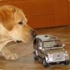 Naja cool ist er schon, der kleine Mercedes - G-Klasse.