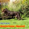 Kalendertürchen 16. Dezember - Rückblick August 2013